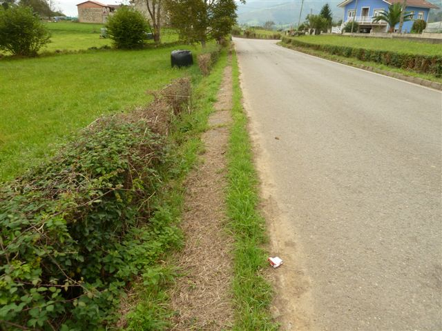 Desbroce de carreteras